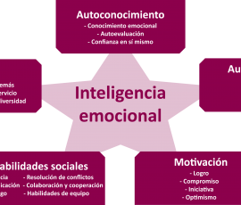 cinco-componentes-intelige