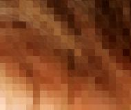 pelo pixel1